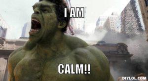 resized_mad-meme-generator-i-am-calm-ea1918