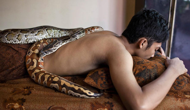 snake-massage-in-jakarta-indonesia-proves-to-be-a-bestseller-1