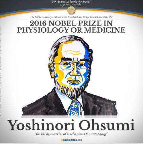 Nobel Prize Medicine 2016