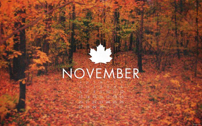November Facts