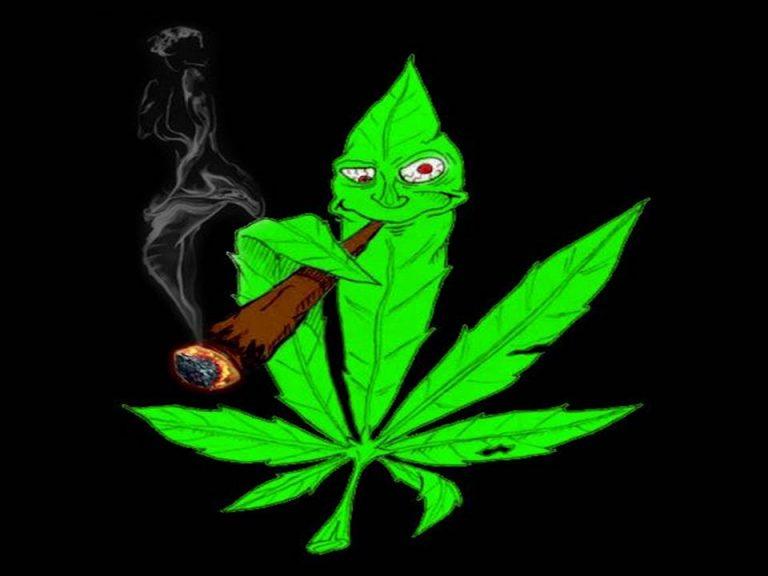 Гуляет с коноплей марихуана кавказ