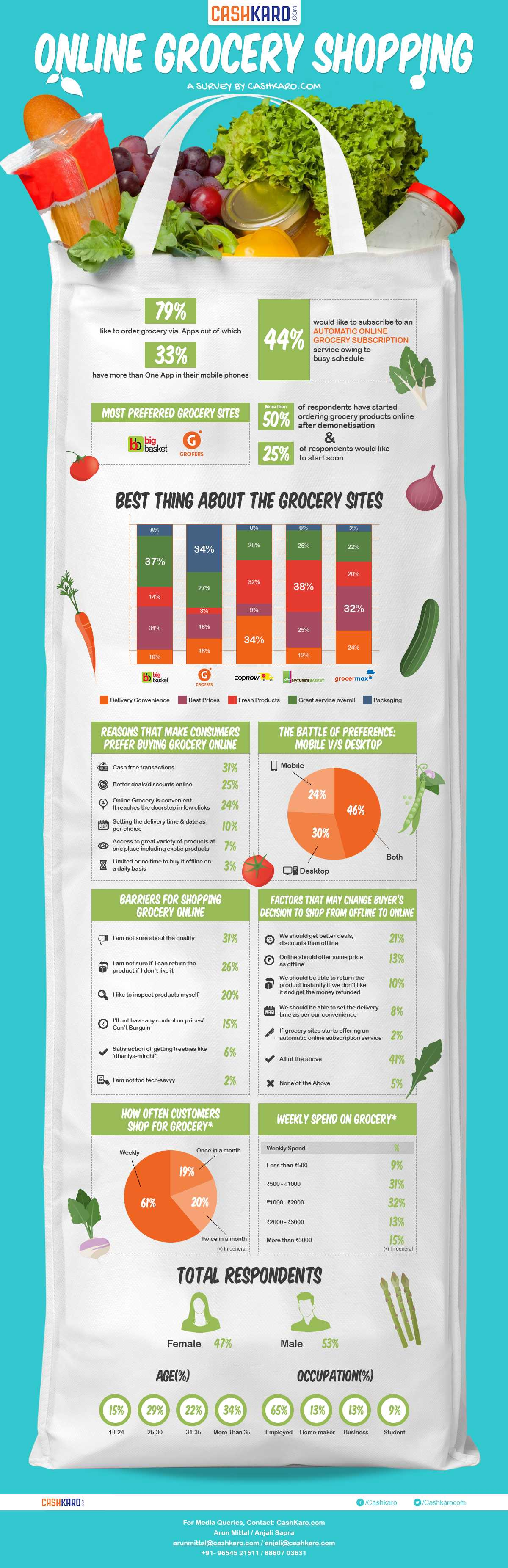 buying groceries online - Infographic
