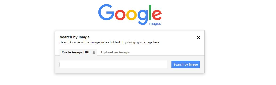 Google Search Images Using Images