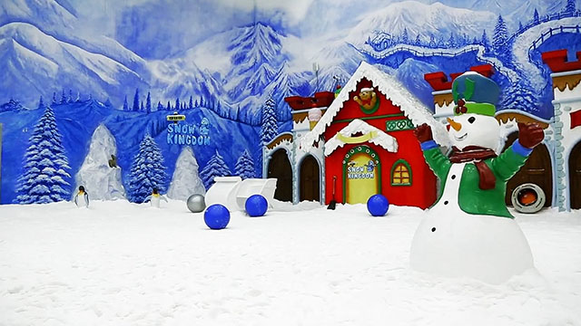 5-VGP-Snow-Kingdom