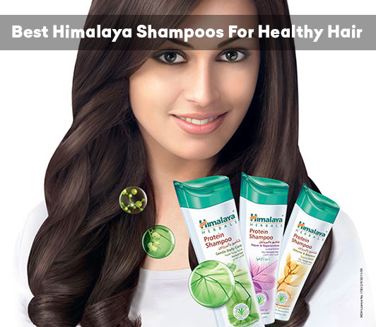 6 Best Himalaya Shampoos For Healthy And Strong Hair | Review 2019
