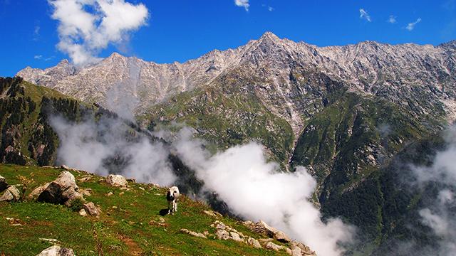 Dhauladhar-Ranges