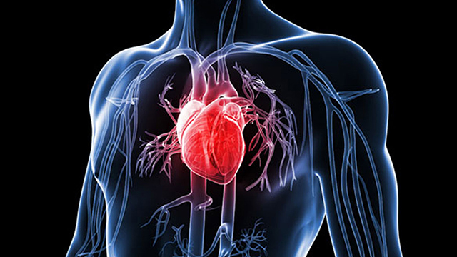 Prevent-Heart-Diseases