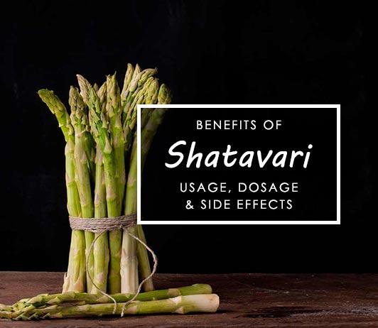 Shatavari Side Effects and Uses