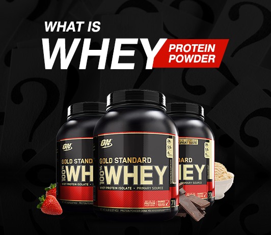 What Is Whey Protein: The Basics & More