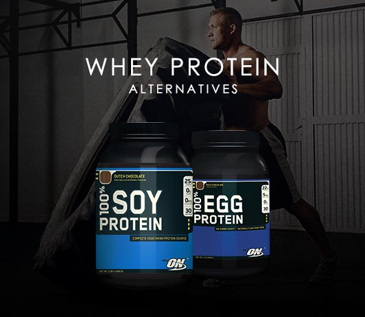 Whey Protein Alternatives: 5 Best Substitutes For Whey Protein