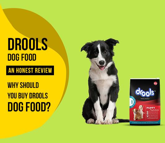Drools Dog Food Review India