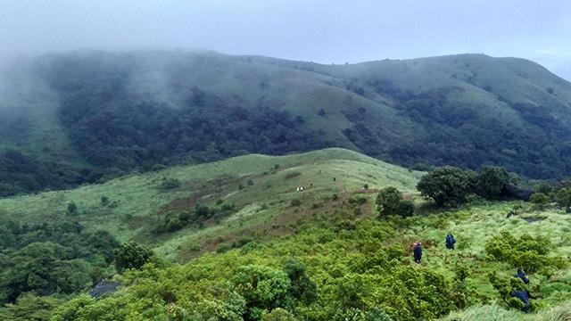 11-Brahmagiri-Wildlife-Sanctuary-a