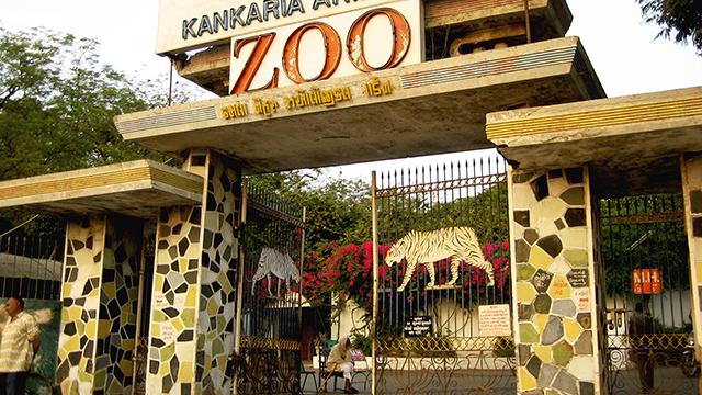 20-Kamala-Nehru-Zoo