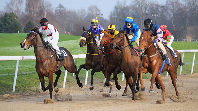 09-Horse-Race-at-Mahalaxmi-Race-Course