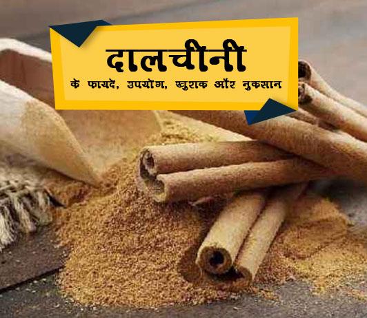 Dalchini in Hindi दालचीनी: कमाल के फायदे, उपयोग, खुराक, साइड इफेक्ट्स, कीमत