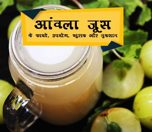 Amla Juice ke fayde Hindi me आंवला जूस: लाभ, उपयोग, खुराक, दुष्प्रभाव, मूल्य