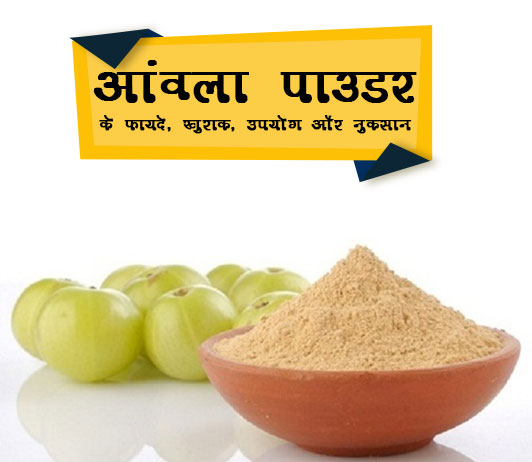 Amla Churna Benefits in Hindi आमला पाउडर के फायदे, खुराक, उपयोग और नुकसान