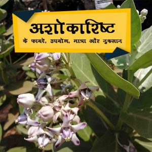 ashokarishta in hindi अशोकारिष्ट के फायदे, उपयोग, मात्रा और नुकसान