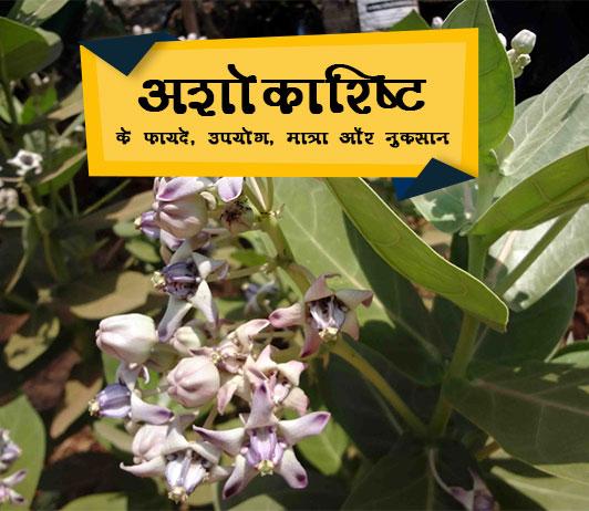 ashokarishta benefits in hindi अशोकारिष्ट के फायदे, उपयोग, मात्रा और नुकसान