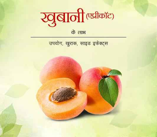 Apricot Benefits Side Effects in Hindi खुबानी के लाभ: उपयोग, खुराक, नुक्सान और सावधानियां