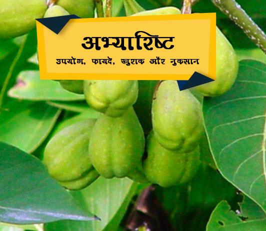 Abhayarishta ke fayde aur nuksan in Hindi