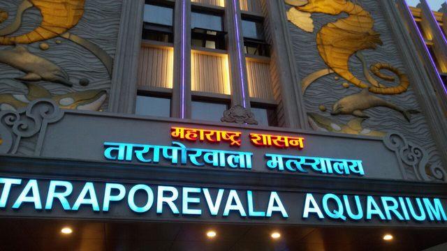 तारापोरवाला एक्वेरियम , Taraporewala Aquarium one of the tourist places in mumbai
