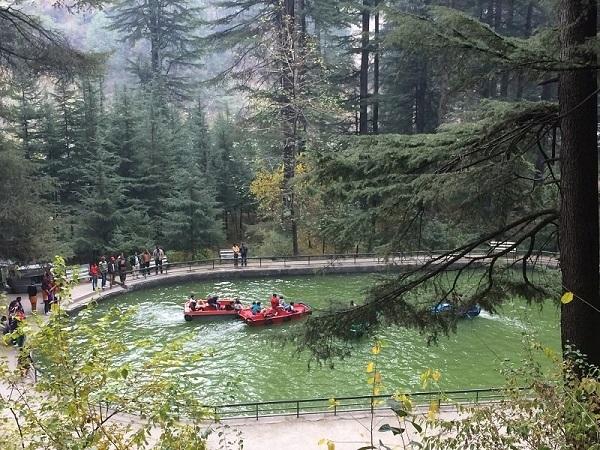 वन विहार नेशनल पार्क मनाली में जाने के लिए आकर्षक जगह