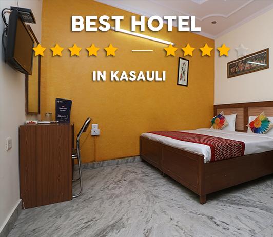 Best Hotels In Kasauli
