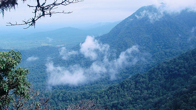 Agumbe - Best Hill Station in Karnataka