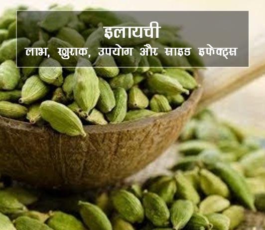 elaichi ke fayde aur nuksan in hindi