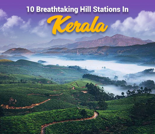 Hill Stations In Kerala: 10 Top Kerala Hill Stations List That You Should Not Miss