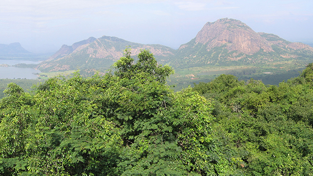 Pani Hills - Exciting Hill Station in Chennai