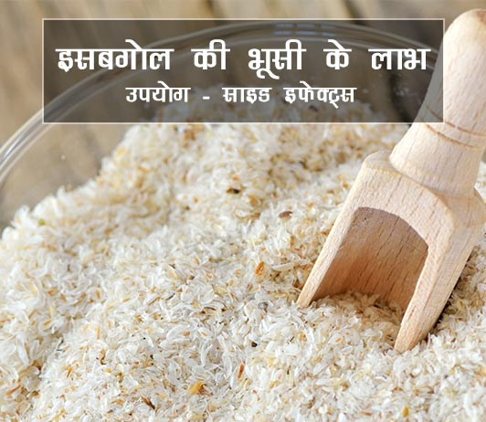 psyllium husk ke fayde aur nuksan in hindi