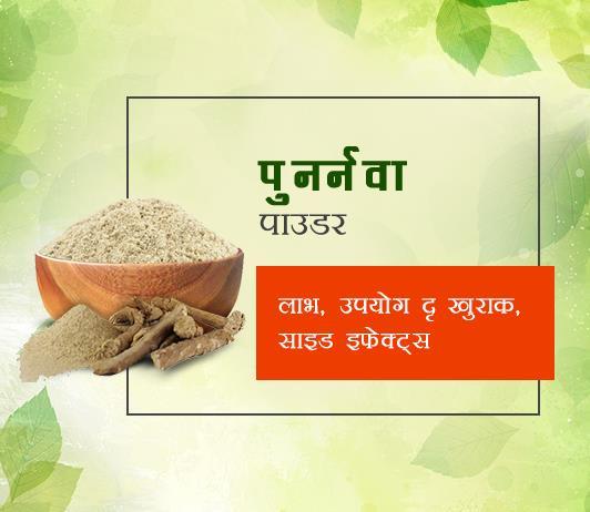 punarnava powder ke fayde aur nuksan in hindi