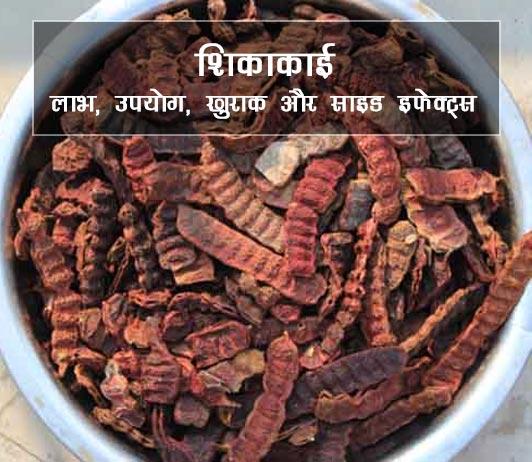 shikakai ke fayde aur nuksan in hindi