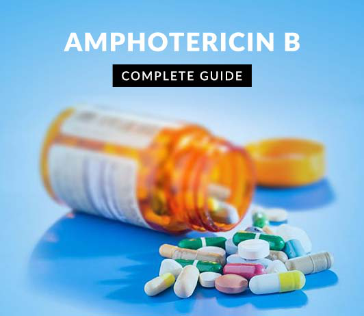 Amphotericin B: Uses, Dosage, Price, Side Effects, Precautions & More