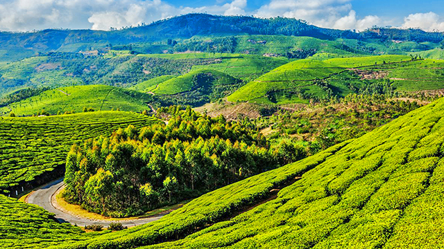 Coonoor - Picturesque Hill Station in South India