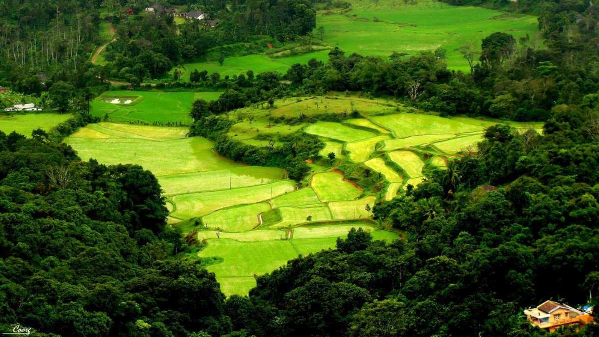 Coorg - Beautiful Hill in Bangalore