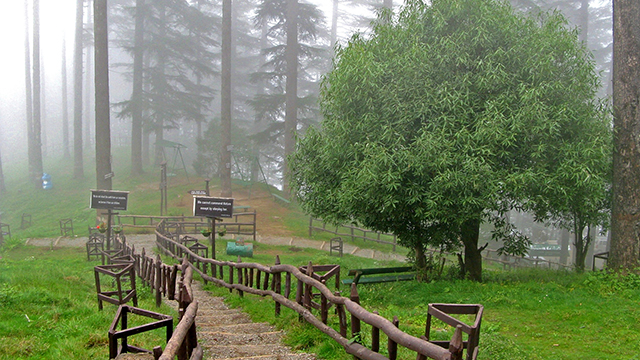 Dhanaulti - Best Hill Station in Uttarakhand
