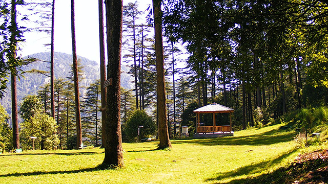 Dhanaulti - Beautiful Nainital Hill Station