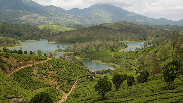 Yelagiri Hills -  Beautiful Hill in Tamilnadu
