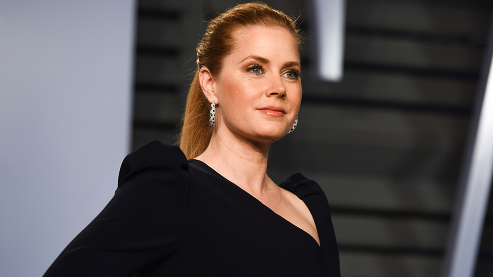 The Ten Best Days of my Life Amy Adams New Upcoming Movie