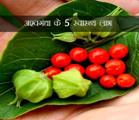 अश्वगंधा के 5 स्वास्थ्य लाभ जो आपको स्वाभाविक रूप से वजन कम करने में मदद कर सकते हैं (Ashwagandha For Weight Loss In Hindi)
