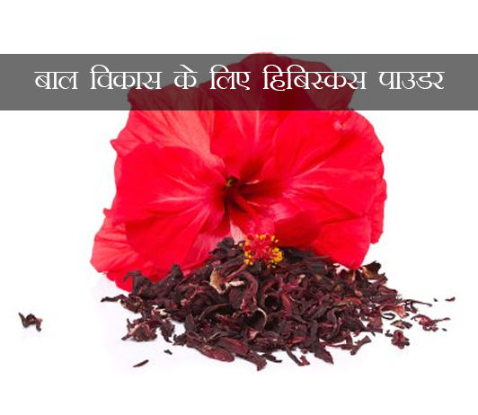 Hibiscus Powder for Hair Growth ke fayde aur nuksan in hindi