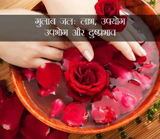 गुलाब जल: लाभ, उपयोग, उपभोग और दुष्प्रभाव (Gulab Jal In Hindi)