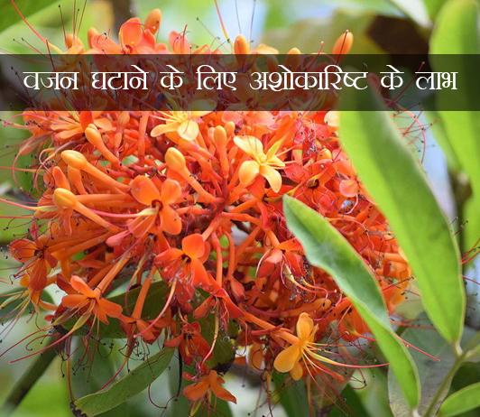 Ashokarishta for weight loss ke fayde aur nuksan in hindi