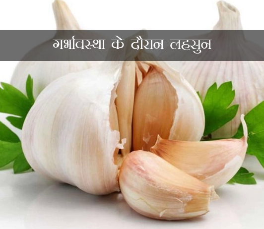Garlic During Pregnancy in hindi