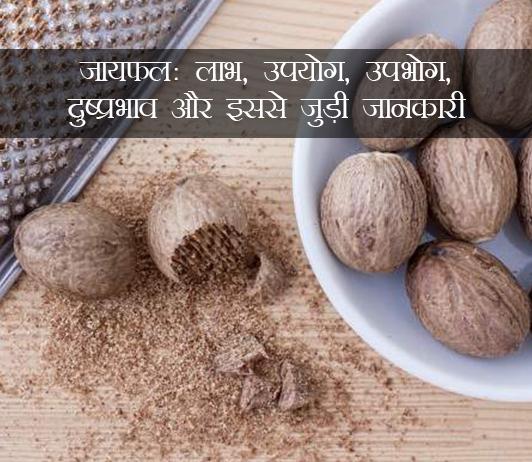 Jaiphal ke fayde in Hindi जयफल (जायफल): लाभ, उपयोग, खुराक, साइड इफेक्ट्स,