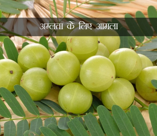 Amla for Acidity in hindi