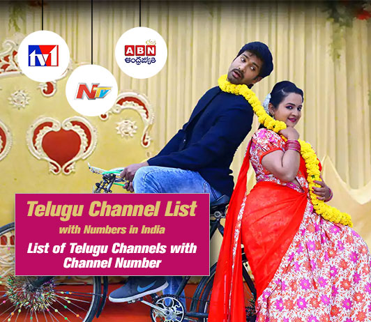 Telugu TV Channel List 2019: All Telugu Channel Numbers in India